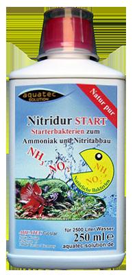 Nitridur Start